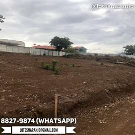 Lote 392m2