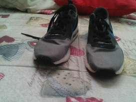 zapatos grise talla 40
