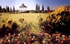 Ideal para inversionistas. Parcela Parque de Paz excelente ubicación, cerca de la Capilla