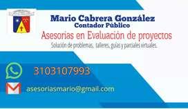 Tutorias en Evaluación de proyectos