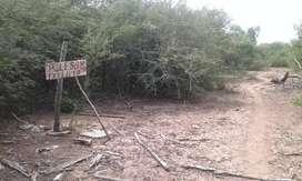 Un campo de 250 extarias con 18 años de antiguedad En Fuerte Esperanza a 5kl de ese pueblo