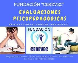 EVALUACIÓN PSICOPEDAGÓGICA  - VALLE DE LOS CHILLOS