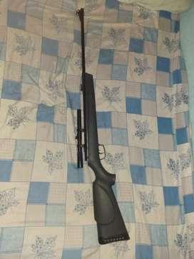 Rifle aire comprimido GAMO 5.5