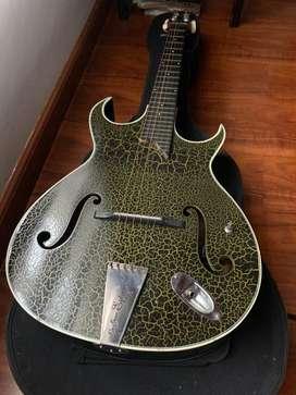Guitarra electroacustica + estuche