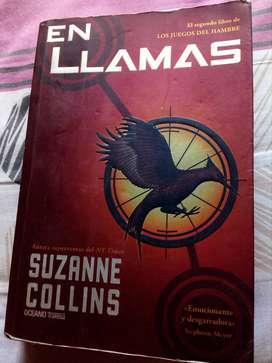 Libro ''En llamas''