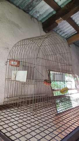 Vendo jaula para ave