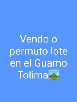 Vendo o permuto lote en el Guamo Tolima