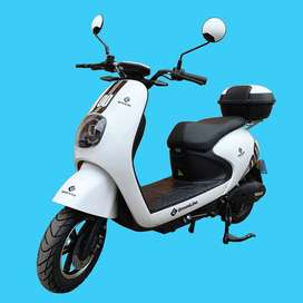 GreenLine Moto Electrica TAILG M5
