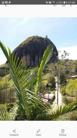 Alquiler de  hermosa Cabaña en Guatape