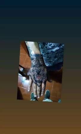 Buenos tatuajes cambio x articulos nuevos