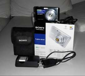 CAMARA DIGITAL SONY DSC-W310