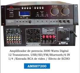 AMPLIFICADOR DE POTENCIA AUDIO KING 3000W