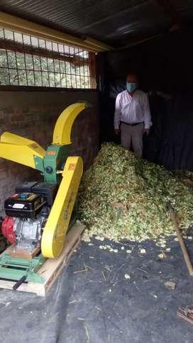silo de maíz