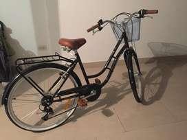 Bicicleta basica