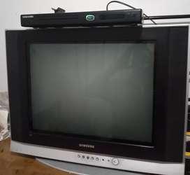 TV 21 pulgadas convencional + DVD