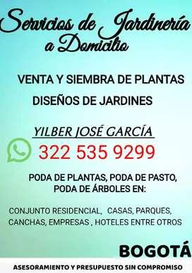 Servicios de Jardinería en Bogotá