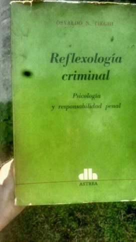 Libro de Derecho Penal Psicologia