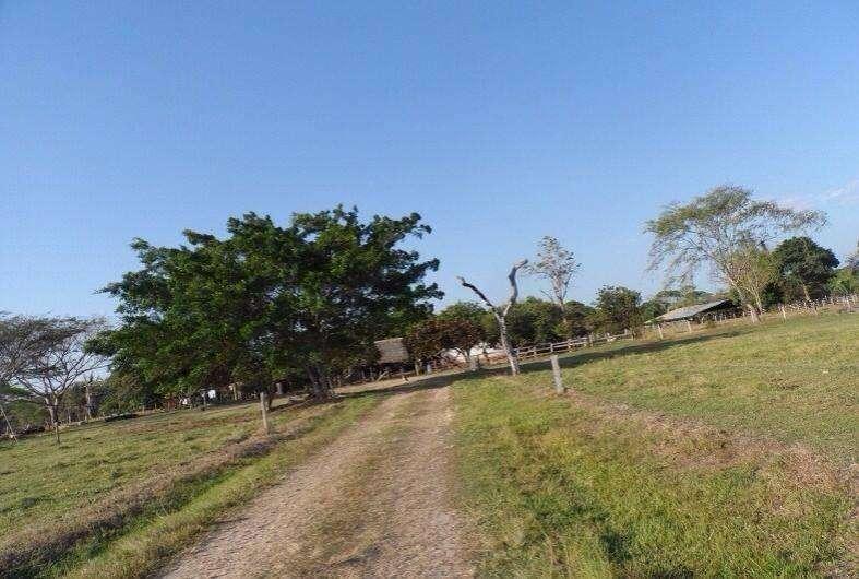 Finca en Arauca Se vende Tame via cachama  - wasi_181890 - inmobiliariala12 0