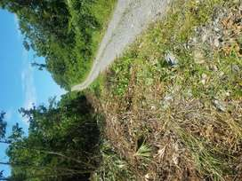 VENDO SOLAR EN LAGO AGRIO VIA QUITO KM 17