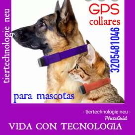 COLLARES GPS.