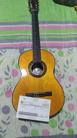 Guitarra Milenium