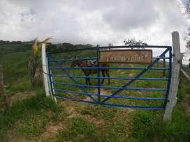 Finca Ganadera – Guaduas, Cundinamarca
