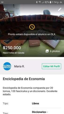Enciclopedia de economia