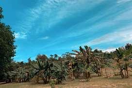 Venta de finca El Paraíso, ubicada en el condominio Villas del Palmar a la salida del municipio de Turbaco