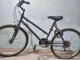Bici monta bikey