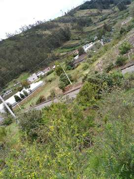 Vendo terreno en Pillaro - Emilio Maria Teran