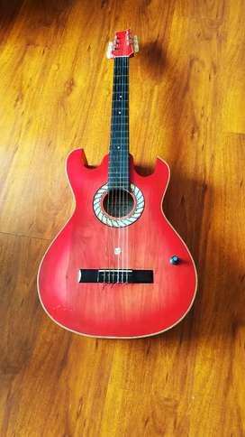 Guitarra acustica con forro