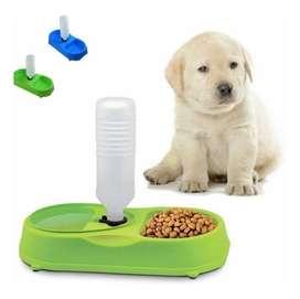 Plato Comedero Perro Mascota Dispensador Agua