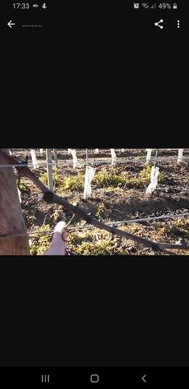 Vendo alambre usado en viña. Excelente estado del 17 y del 15