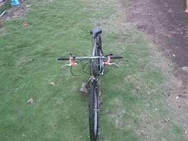 Bicicleta rig 26