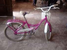 Bicicleta Tomaselli City Rod. 20 poco uso
