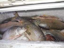 Vendo pescado, bogas $300 el kilo linda para la parrilla y frito