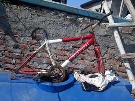 Bicicleta **20