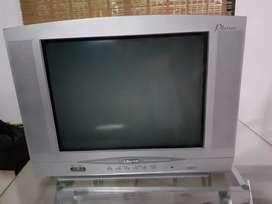 tv 20' Crown