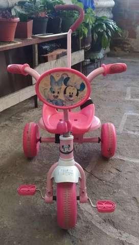 Triciclo y carro montable
