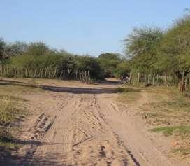 Vendo campo en los límites de Córdoba con Santiago del estero ojo de agua