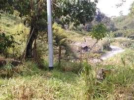 Se vende o se cambia terreno de más de hectárea y media en el municipio San Roque