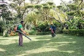 Jardinero servicio de jardineria limpieza de zonas verdes, parquizado y decoracion