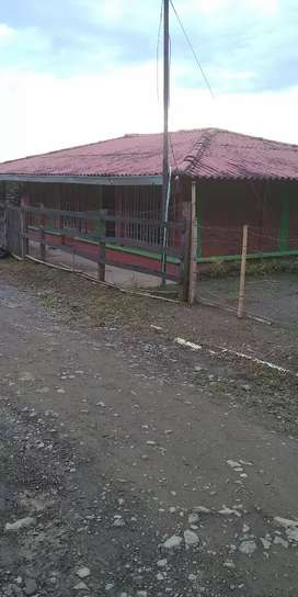 Venta cabaňa Yarumal