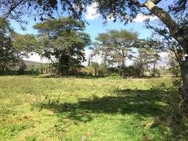 Vendo terreno en Santiago del Rey, carretera Ibarra-Urcuquí, vía al Yachay