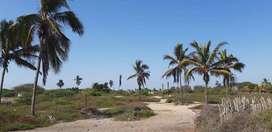 Vendo  OPORTUNIDAD. Frente al mar. terrenos PLAYAS / inversionista. Ideal para hotel, proyecto inmobiliario, Condominios