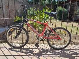 Vendo Bicicleta de Niño Rodado 20