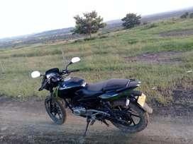 Moto Pulsar