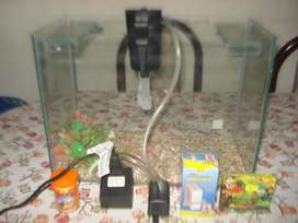 Pecera Completa C/accesorios 40x30x20 Incluye Wisper13 Gal