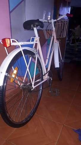Bicicleta Paseo Mujer R.26