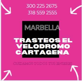 trasteos marbella cartagena 0